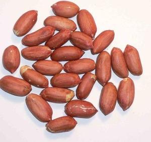 【恐怖】中国産ピーナッツ類 「自然界最悪」の発がん性含むカビ毒検出