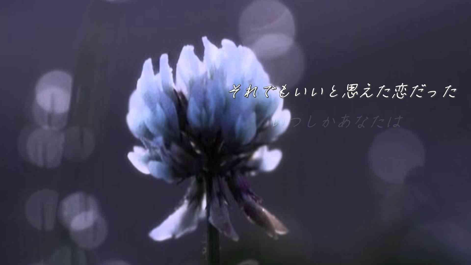 HY 366日 .。.:*・゜歌詞付き:*・゜。:.* - YouTube