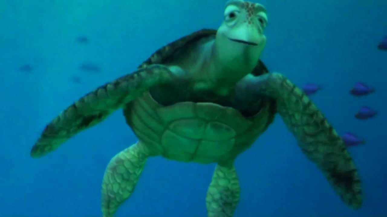 タートル・トーク TurtleTalk  クラッシュどアップ 東京ディズニー・シー - YouTube