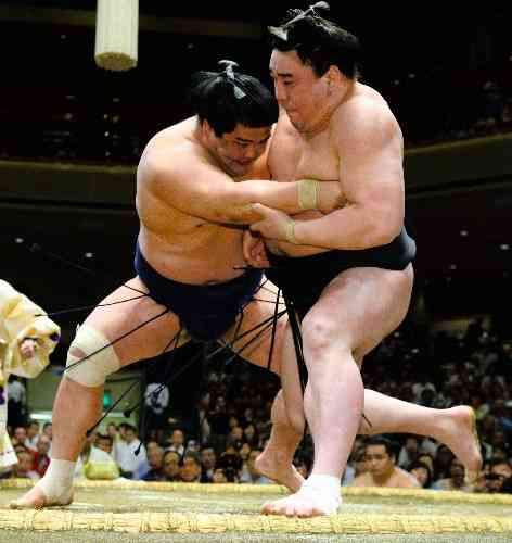 相撲好きな人!