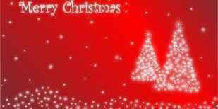 20代2人に1人「今年はクリスマス楽しみじゃない」!?2割「1人で過ごす」プレゼント予算「1000円未満」36.4% - IRORIO(イロリオ)