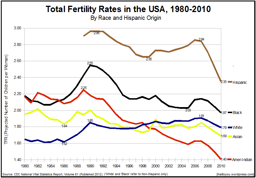 The USA's Total Fertility Rates by Race, 1980 to 2010 | Hail To You