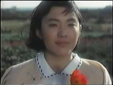 水原希子、憧れのビヨンセに感激「私が作った服を着てる」「嬉しすぎて死んでしまうかもしれない」