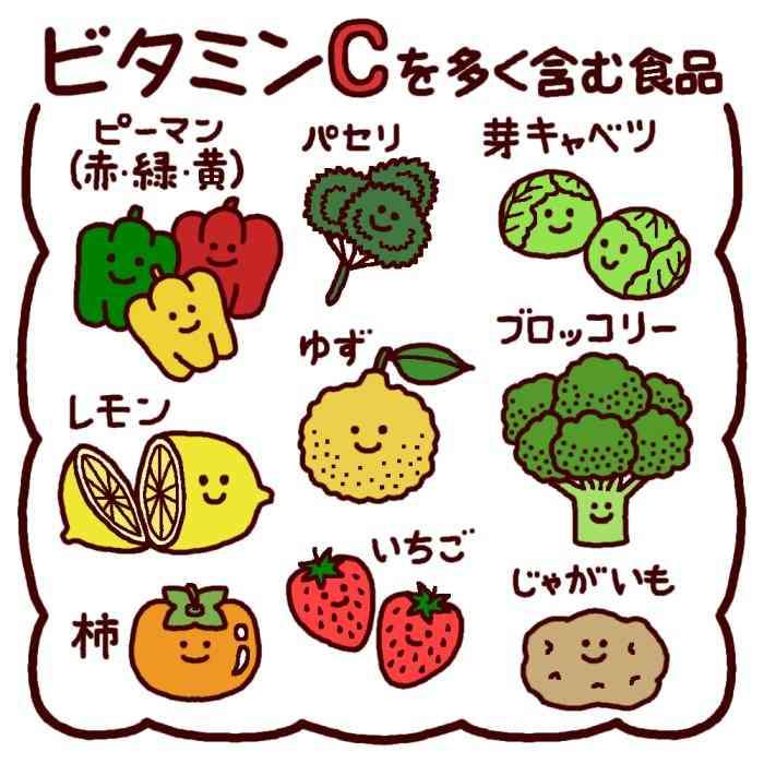 ビタミンCを多く含む食品(カラー)/給食の無料イラスト/生活/学校素材