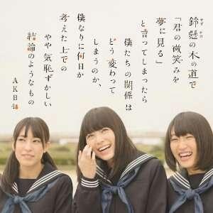 AKB48 最新シングル『 鈴懸の木の道で 』 劇場盤CD3枚セット A - ヤフオク!