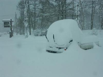 雪国、雪国出身者あるある
