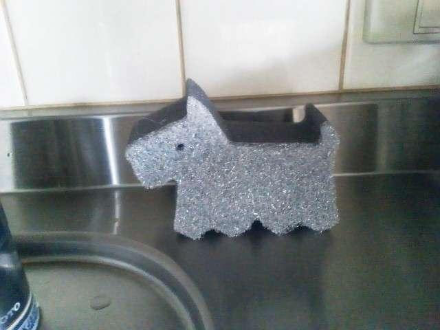台所のスポンジって使い分けてますか?