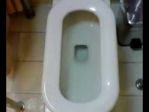 18歳少女が泊まりに来て、トイレを貸した結果…