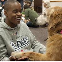 海外の大学で導入され始めてる「セラピー犬」が羨ましい - NAVER まとめ