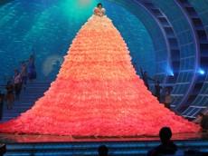 歌手の水森かおり、紅白リハーサルに高さ6.3メートルの巨大ドレスで登場