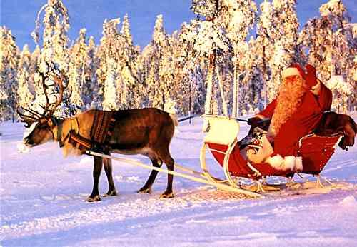 サンタの言うことを全く聞いてくれないトナカイ