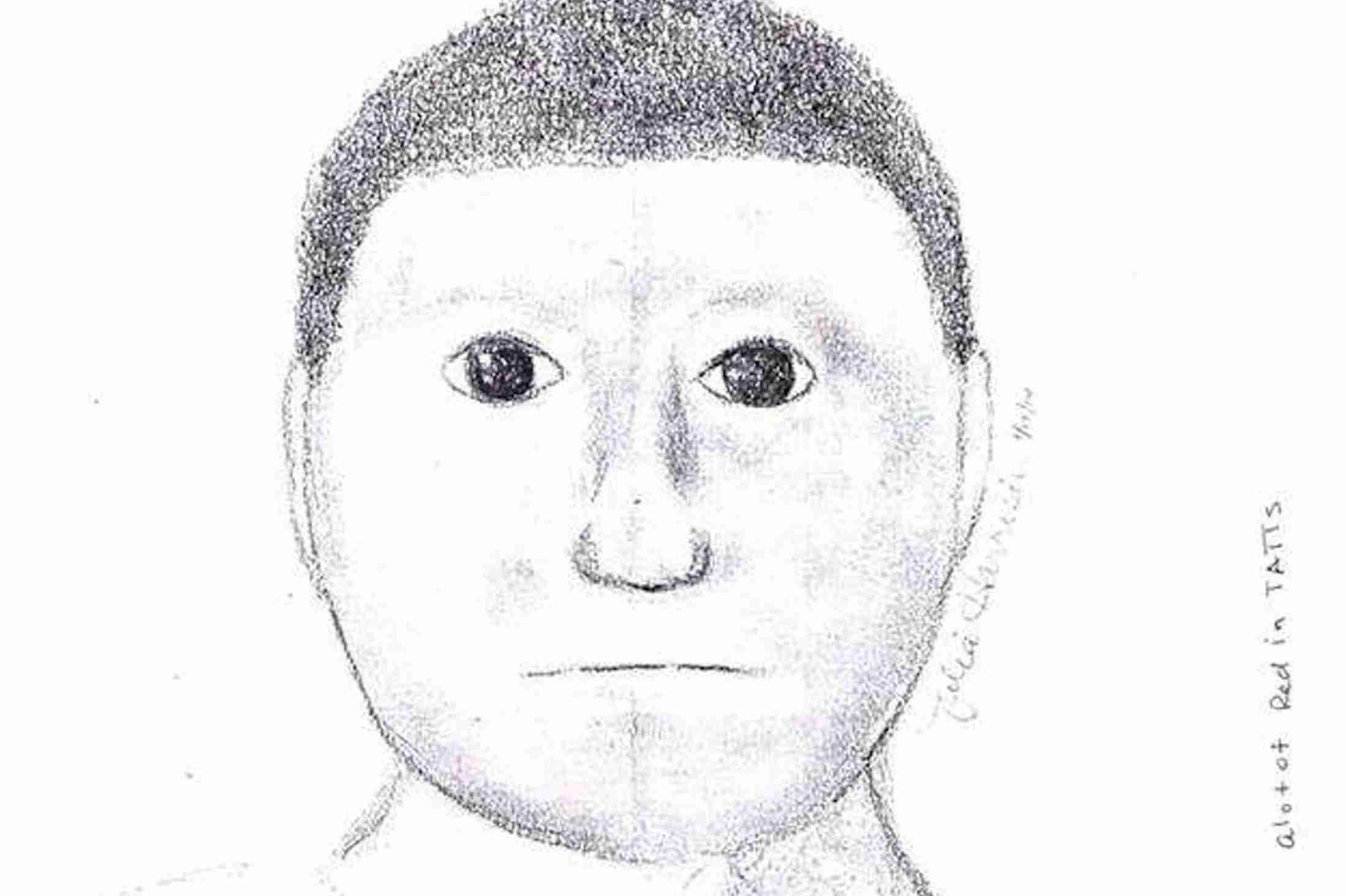 Is this the worst police e-fit ever? Cartoon-style sketch used to trace violent mugging suspect - Mirror Online