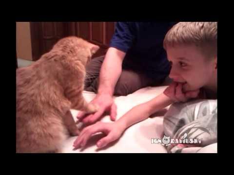 Keep Your Hands Down! (Ну-ка, руку опустил!) - YouTube