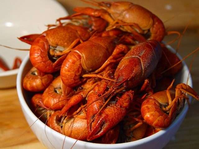 「キャビア」「ロブスター」現代の高級品は、かつて庶民の食べ物だった