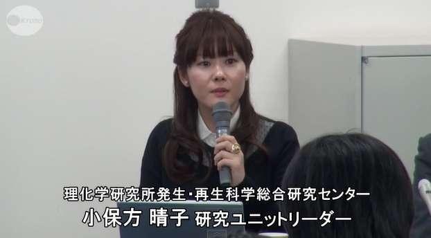 """理化学研究所 小保方晴子さん""""アイドル扱い""""「控えてほしい」"""