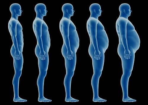 食べてないのに、太ってる人!食べ過ぎで太ってる人!