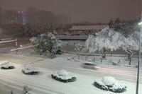 <天気>関東各地で記録的積雪 東京都心で25センチも (毎日新聞) - Yahoo!ニュース