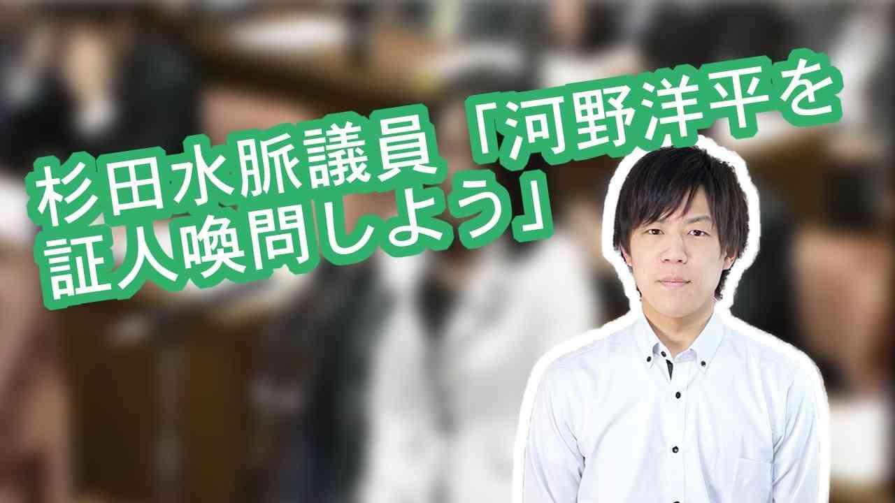 杉田水脈議員「河野洋平を証人喚問しよう」 - YouTube