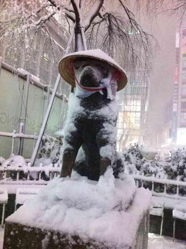 【速報】渋谷の忠犬ハチ公、2匹になる : はちま起稿