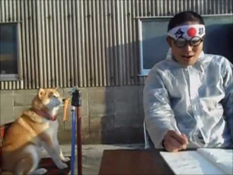 浪人させない犬 - YouTube