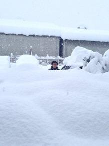 痛いニュース(ノ∀`) : 【画像】 山梨の積雪量が1mを突破! もはや人の住めるところじゃねえと話題に - ライブドアブログ