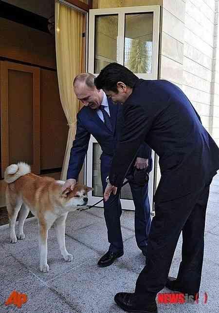 女子知韓宣言(´∀`*) ~韓国ネット翻訳~ : 【韓国の反応】プーチン、安倍に「日本がプレゼントした犬、時々人を噛む」…中国が発言に注目
