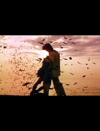 映像が美しい映画♪