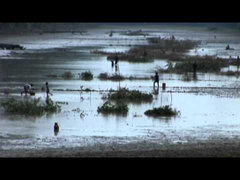 Dancing Across Borders〜カンボジアの貧しい農家の少年が国際的なバレエダンサーに〜(プレビュー) - YouTube