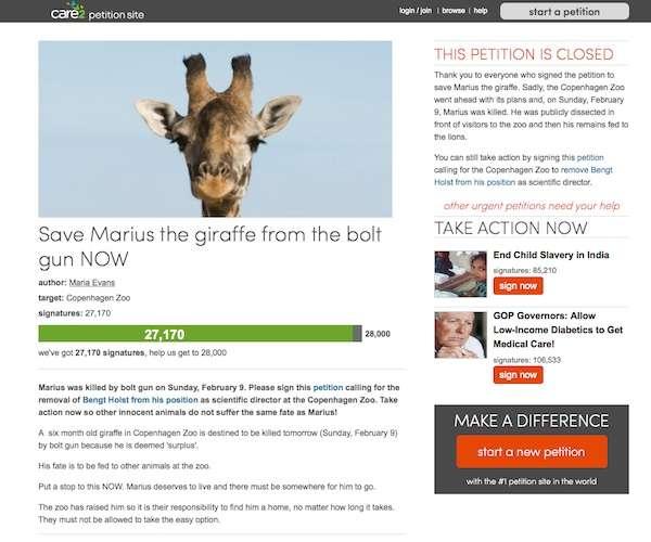余っていたから殺された。公開殺処分されたキリンのマリウスがあぶり出した動物園の矛盾(エキサイトレビュー) - エキサイトニュース(1/2)