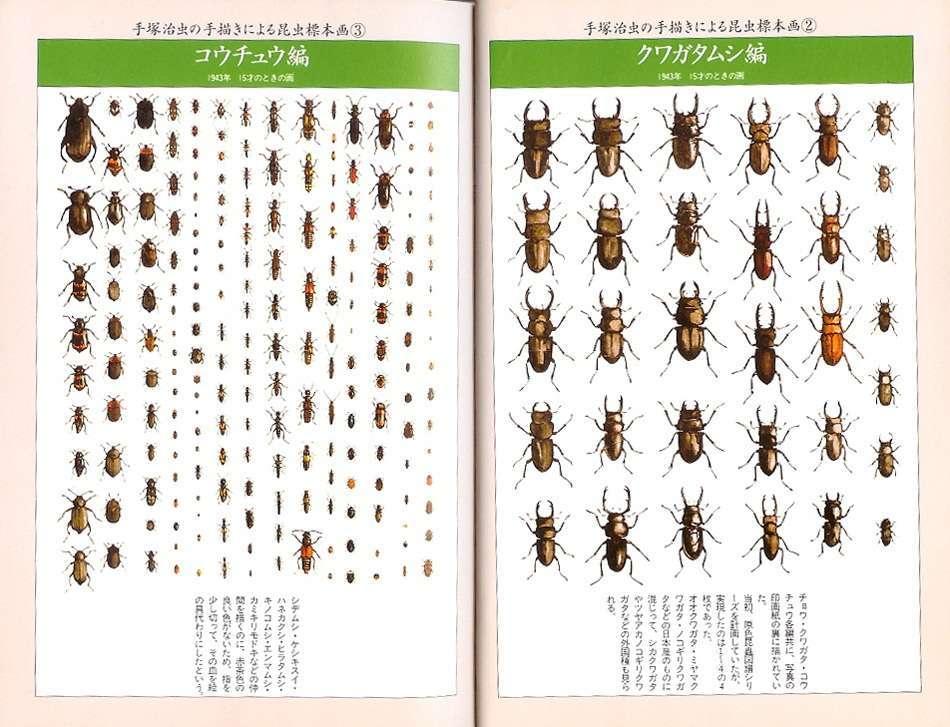 日本を代表する漫画家ランキング 「1位:手塚治虫」