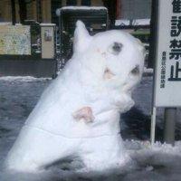 タイ人「東京が大雪で凄く可愛いことになってたwww」 | 親日国タイの反応