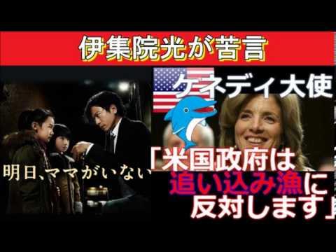 伊集院光「明日ママがいないへの批判は、イルカ漁への反対と同じじゃね?」 - YouTube