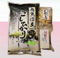 南魚沼産コシヒカリ新米【塩沢産】を産直価格で|コシヒカリたちの