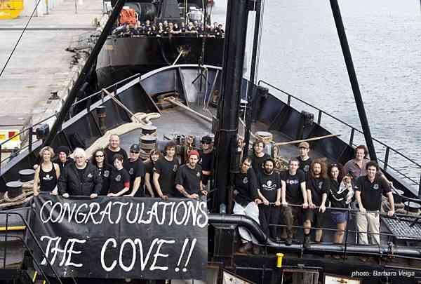 オーストラリアでサメ駆除作戦!172匹を捕獲、50匹を殺処分に