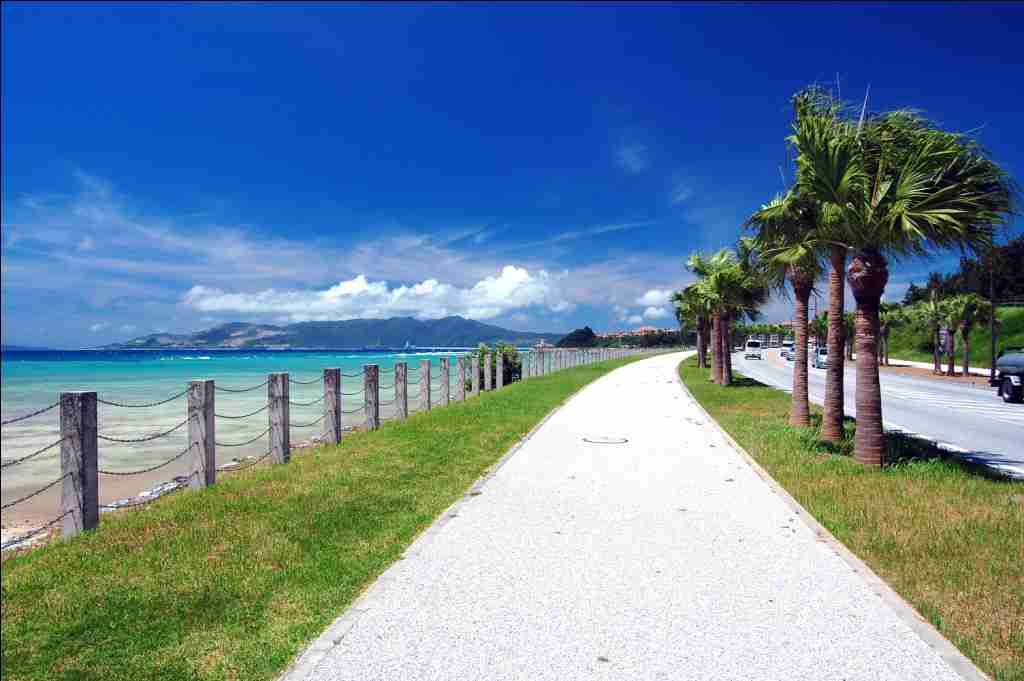ヤシの木と道路の沖縄の壁紙