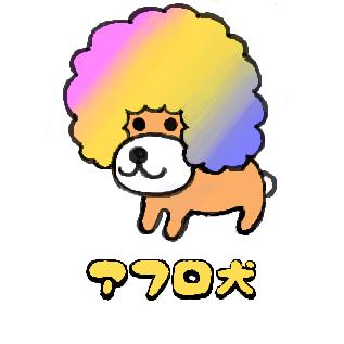 かわいいアフロ犬です。