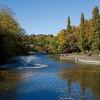 秋におすすめの公園散歩!都内の公園まとめ | HOOK [フック]
