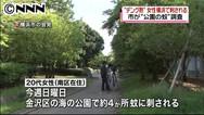 """""""デング熱""""女性 横浜の公園でも刺される   日テレNEWS24"""