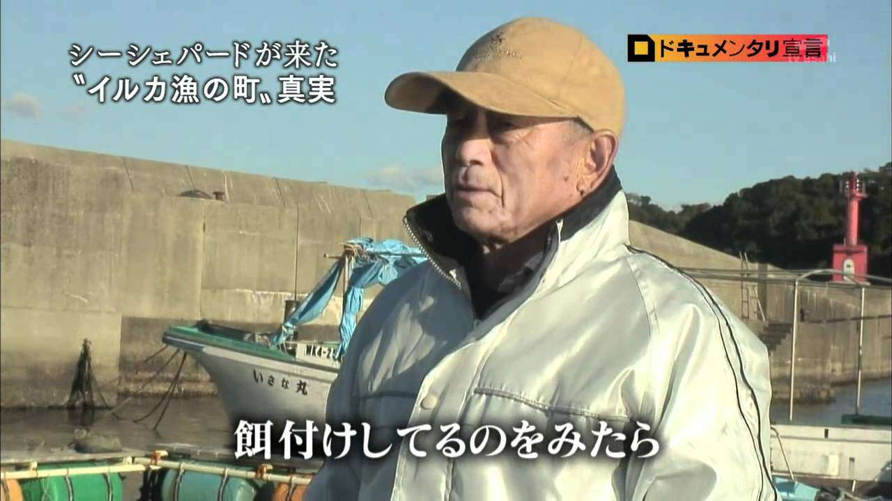 【シー・シェパード特集】イルカ漁妨害に揺れる太地町 1/2 - YouTube