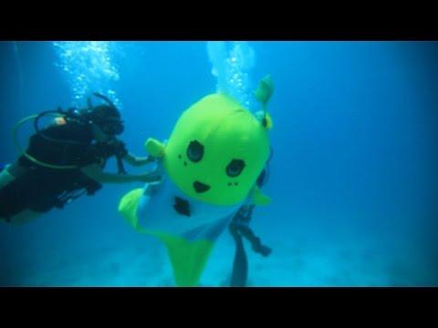 【公式】ふなっしー生まれてはじめて海に潜る - YouTube