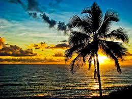 ハワイのオススメの場所