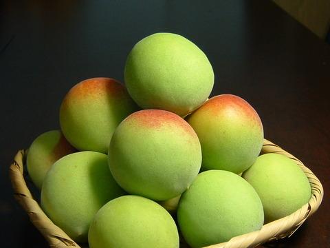 まいう速報 : 【虚偽表示】「紀州梅」は和歌山県内で製造された中国産の梅など…関空のレストランでも