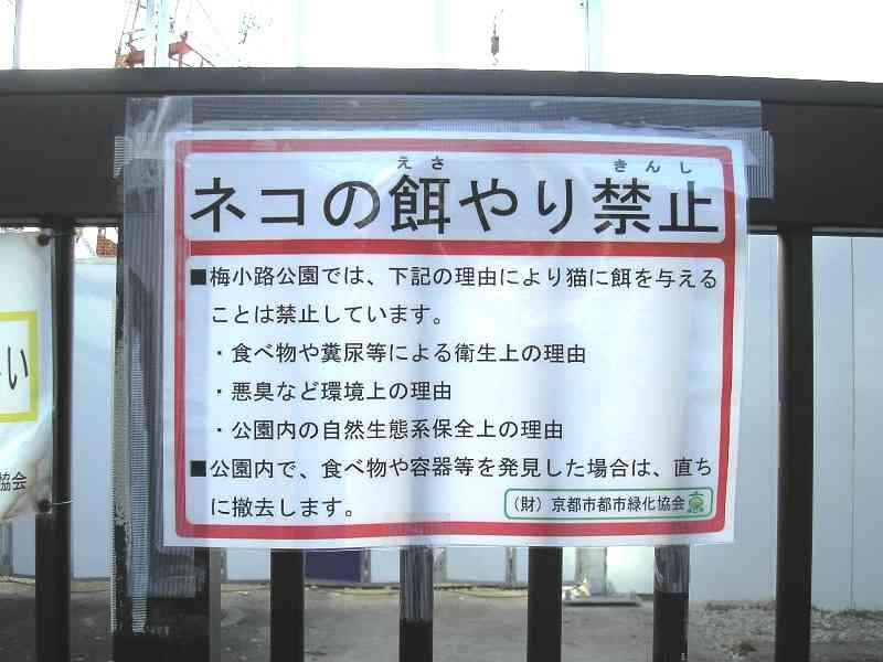 【東京・大田区】猫不審死、首絞め容疑で33歳男を逮捕 「(住民らが)野良猫に餌やりをしているのに憤慨」