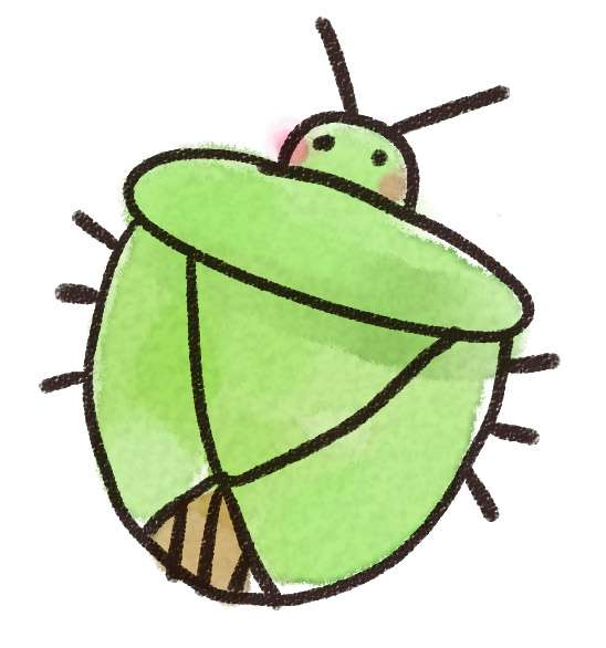 【閲覧注意】家の中で見つけた虫