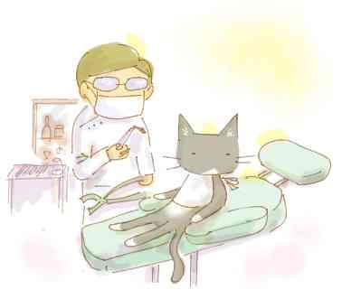 歯医者、定期的に行きますか?