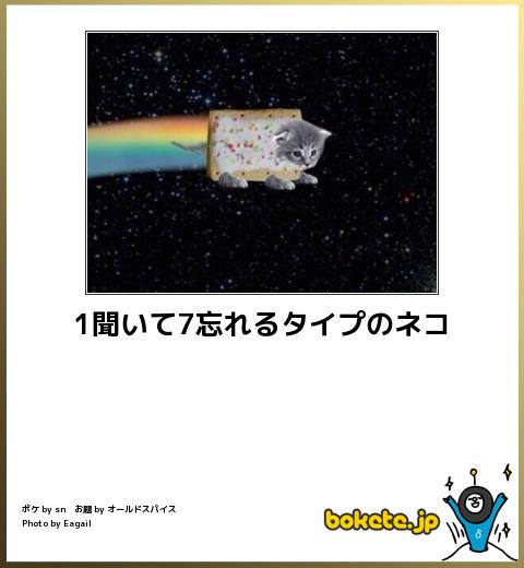 2014/07/07① : ボケて(bokete) 猫 まとめ 最新