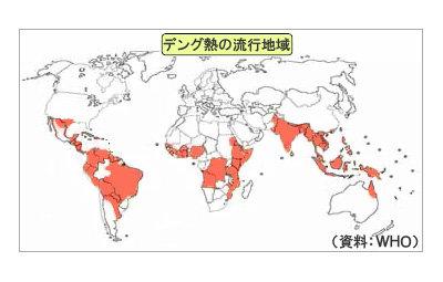 【注意喚起】デング熱の国内感染を確認、約70年ぶり…渡航歴のない埼玉の女性