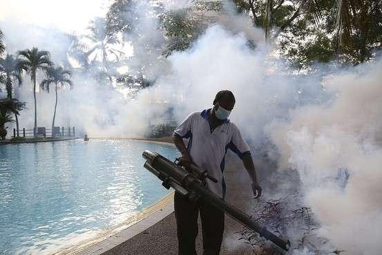 マレーシアでデング熱感染が急増、死者は前年の4倍に―新型ウイルスが一因 - WSJ