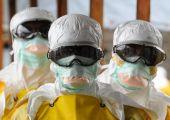 ナショナルジオグラフィックニュース:エボラ拡大止まらず、世界の対応に警鐘 - 毎日新聞
