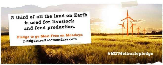 ポール・マッカートニーがラップで懇願「週1回は肉を食べないで!」